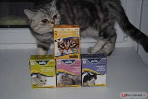 Влажный корм для кошек Бозита